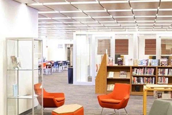 Library – Adelphi University (ALP)