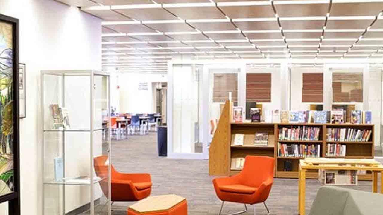 adelphi library alp